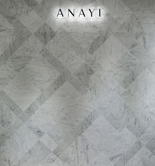 ANAYI 藤崎